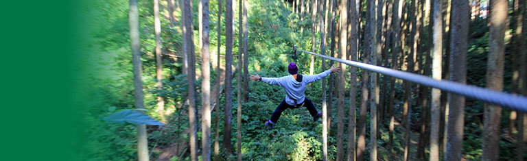 The first Forest Adventure In Japan